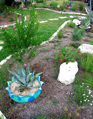 Low Cost Landscaping garden design: garden design with backyard landscaping cost