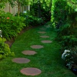 Shady garden with footpath