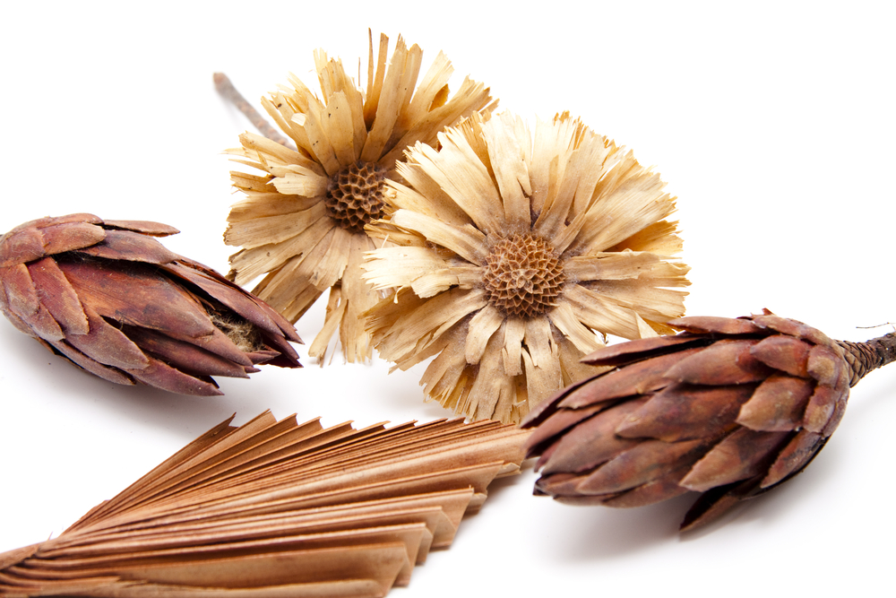 Dried Flower Arrangements For Fall