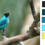 blues song color palette