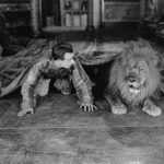 vintage floor carpet lion man