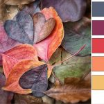 color palette of the week dry leaves thumb