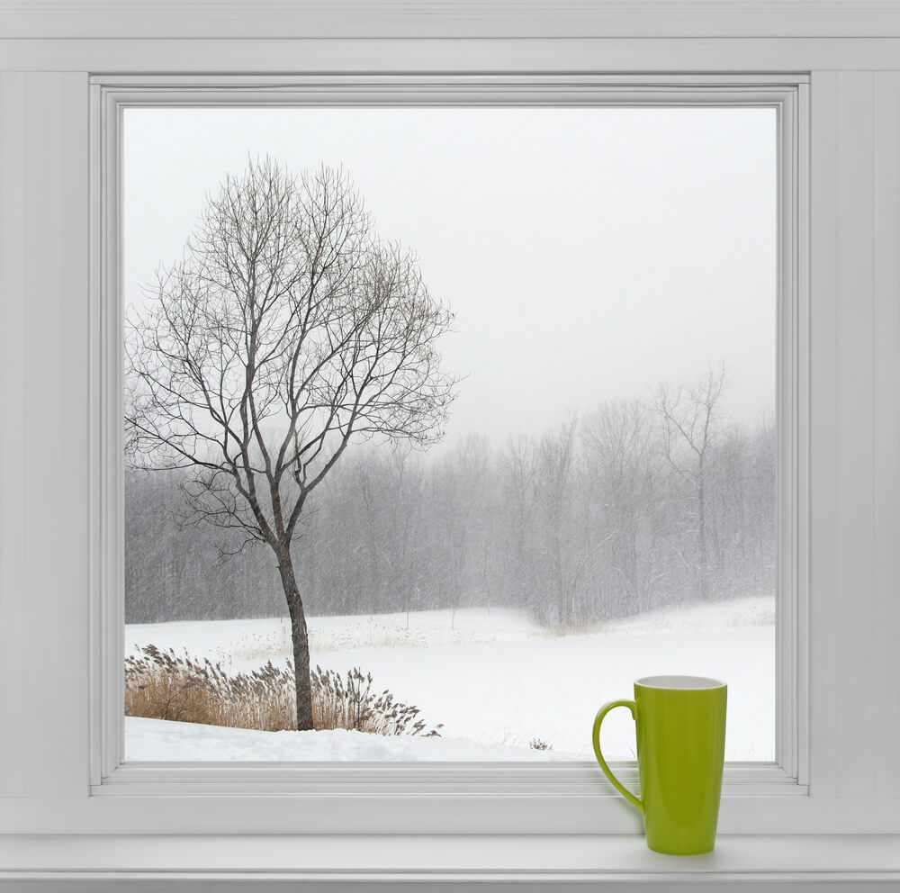 window winter view green cup