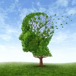 tree leaves memory loss illustration