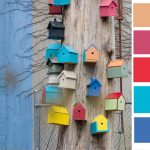 bird town color palette
