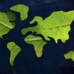 green planet leaves continents