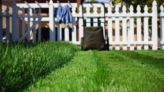 green lawn and mower