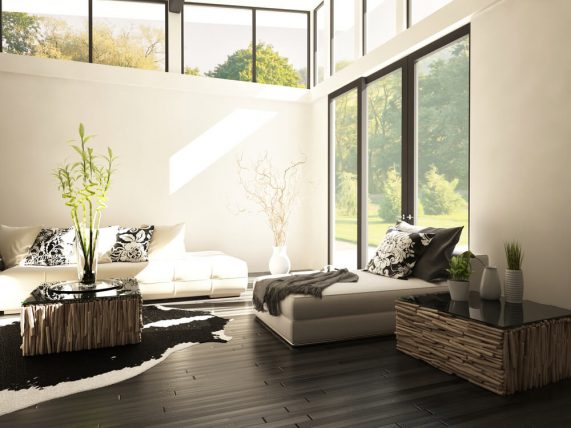 nature interior natural light living room