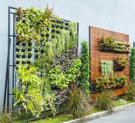 vertical gardens on fence