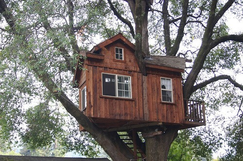 backyard treehouse