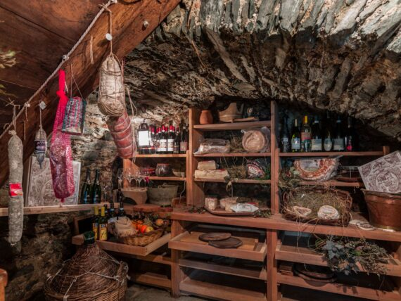 benefits of a root cellar