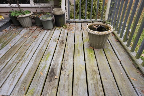 Old rusty wooden deck