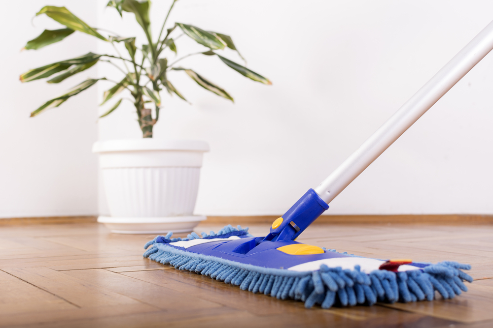 hardwood floor cleaning with mop