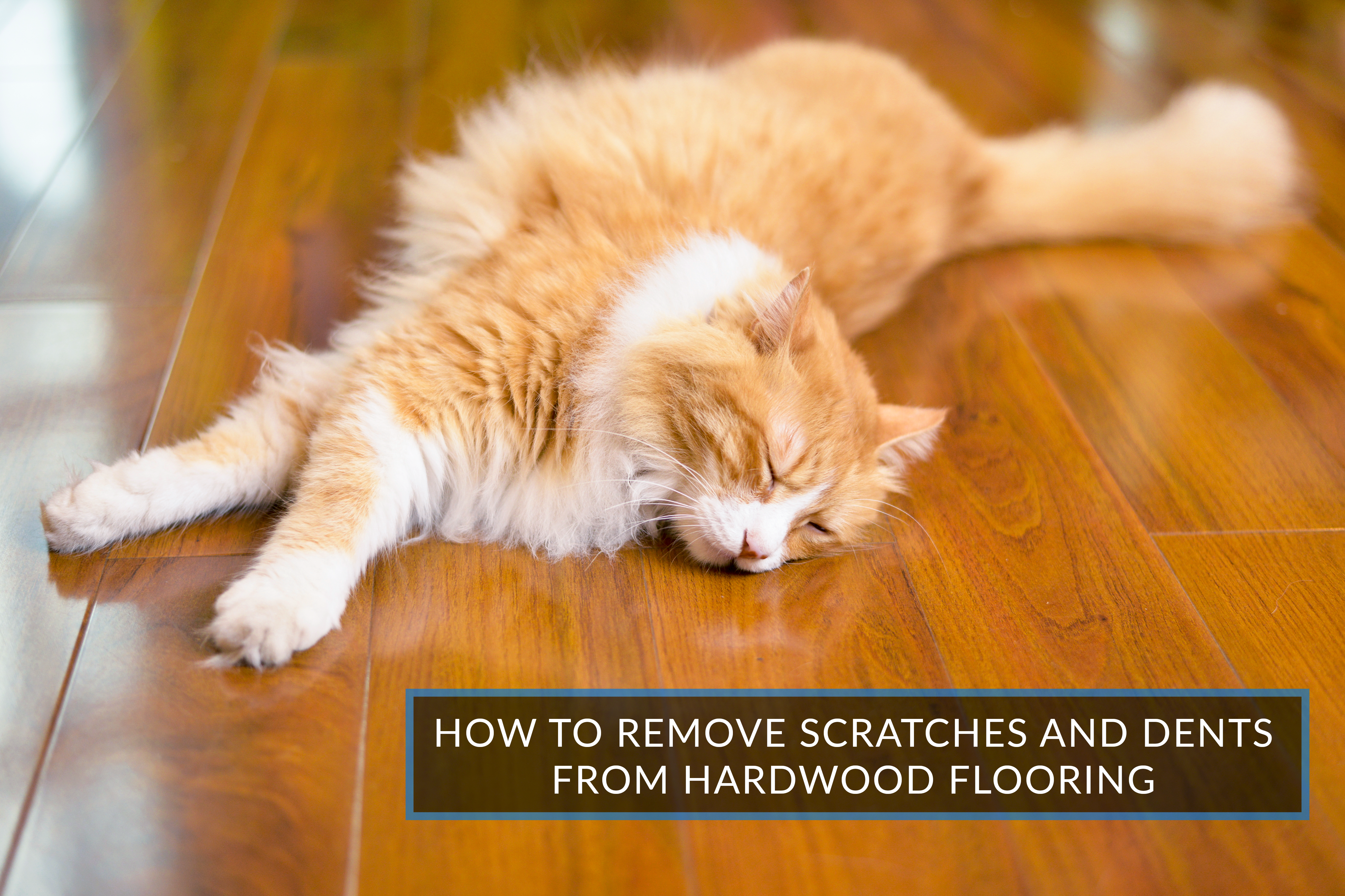 Removing Scratches And Dents From Hardwood Floors - Lift off floor removal