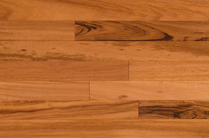 Botanical Name: Astronium Fraxinifolium Tigerwood grows naturally in the in  the neotropical forests of Brazil, Bolivia, Peru, Guatemala, and Mexico. - Tigerwood