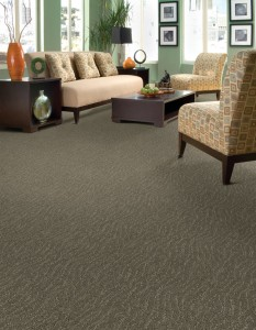 Carpet - Textured Bay View Carpeting