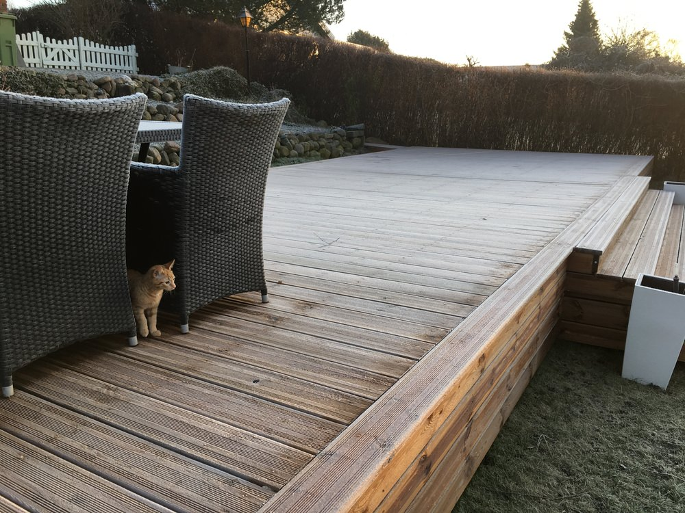 deck with cat