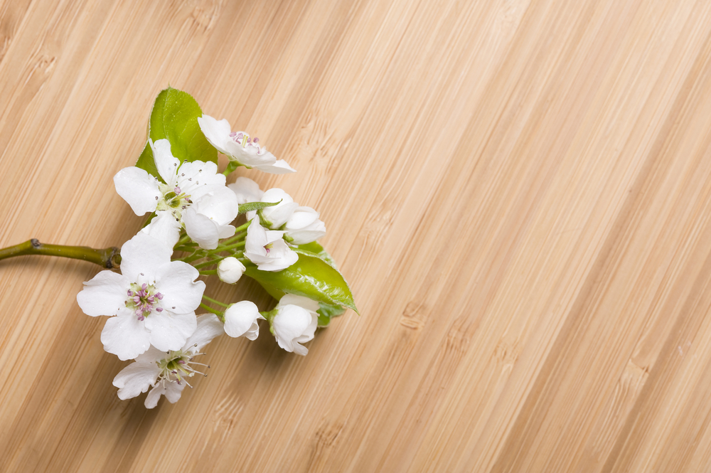 Bamboo flooring with a natural finish offers a clean and contemporary appearance.