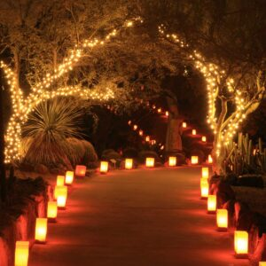 exterior Christmas decor path lights
