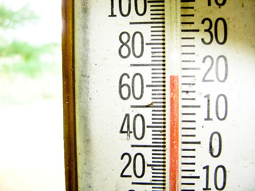 Thermometer reading 19 degrees Celsius