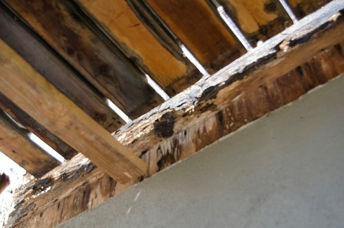 rotting deck joist