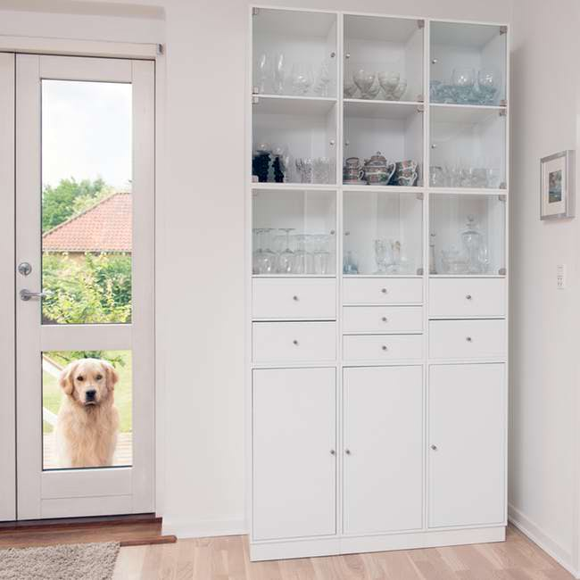 pet-friendly small apartment dog door