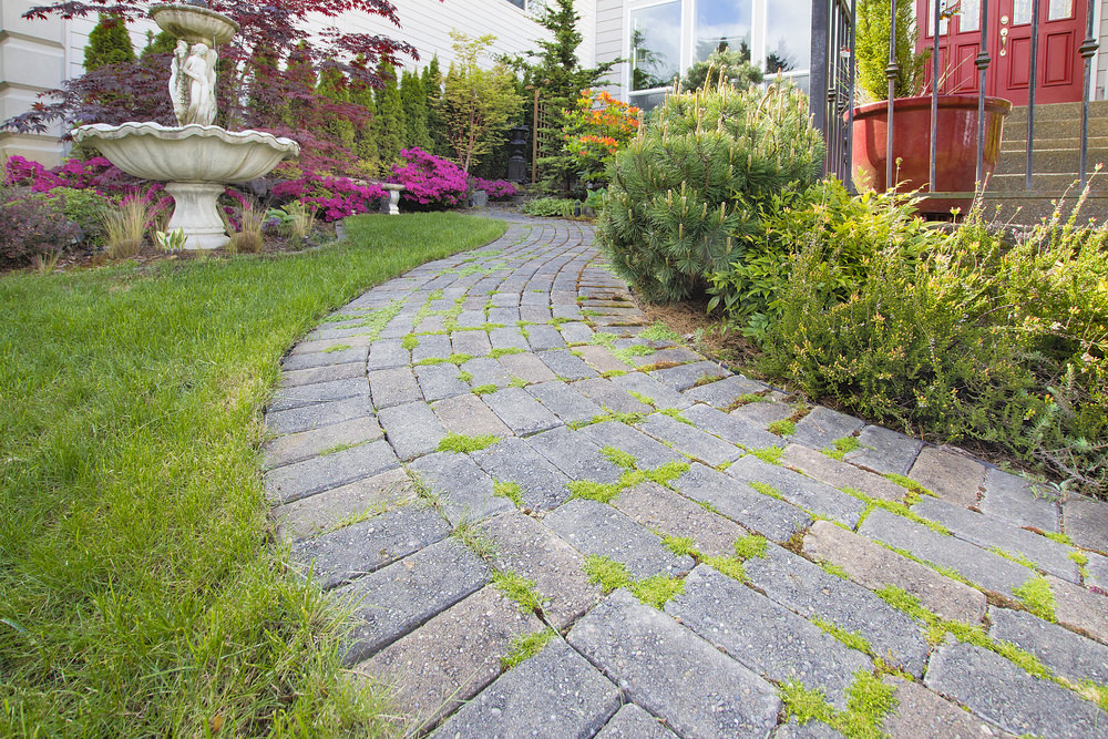 Outdoor Paver in Garden